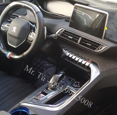 ốp bảng điều khiển và cần số xe Peugeot
