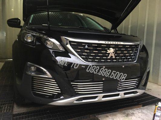 Nẹp mặt calang xe Peugeot